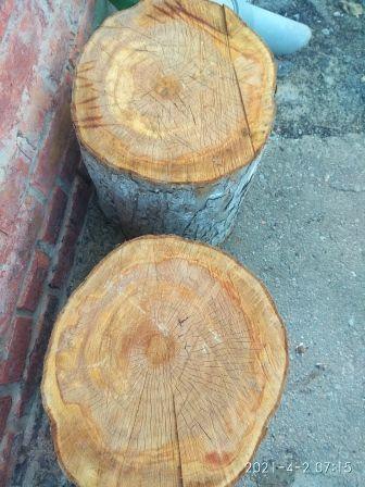 Продам древесину фруктовых деревьев(Можно на угли к шашлыку)