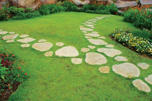 Устройство садовых дорожек. Различные виды и материалы