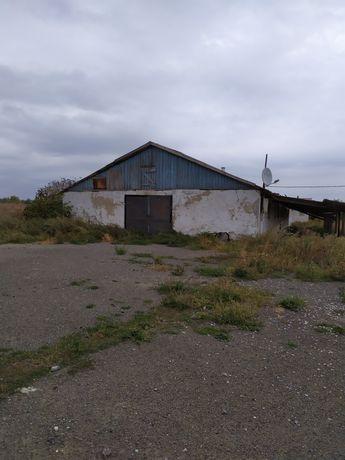 Продам свинарник в с. Краснополье, Старобешевский район