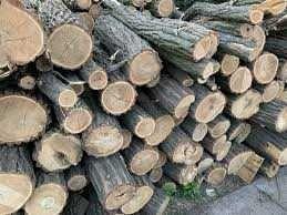 Дрова  Акация метровка,дуб ясень колотые,доставка,твердые породы