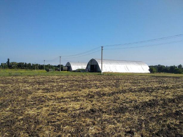 Продам имущественный комплекс, ферма, мельница, с. Купьеватое Полт обл