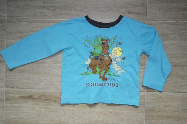 Scooby Doo bluzeczka niebieska 104 110