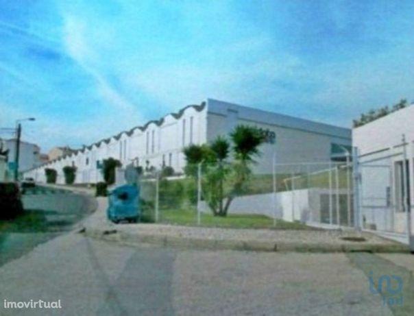 Loja - 5330 m²