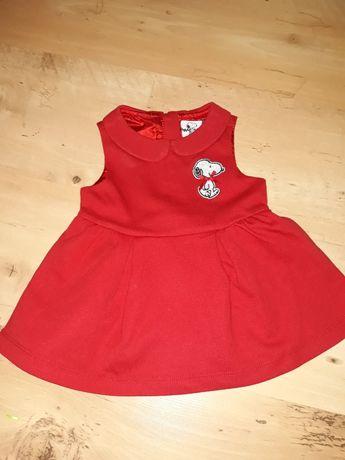 Sukienka r. 56 (z metki 0-3 miesiąca)