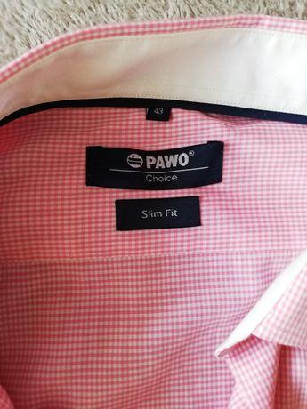 Koszula męska PAWO