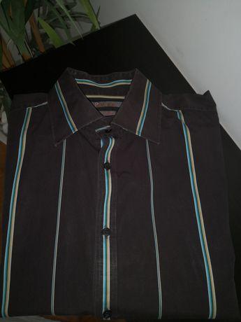 Camisa homem Brice n38