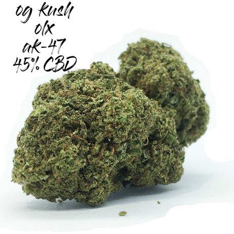 20 Gram MANGO HAZE 45% CBD Susz Marihuana Legal Wyprzedaż PROMOCJA MOC