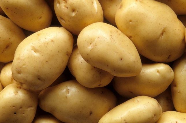 vende se batatas novas