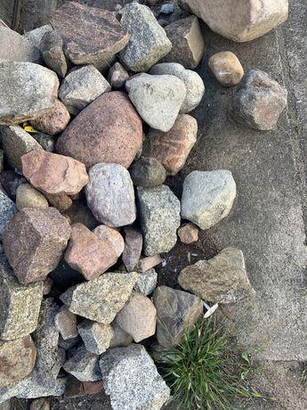 Oddam kamienie na skalniak