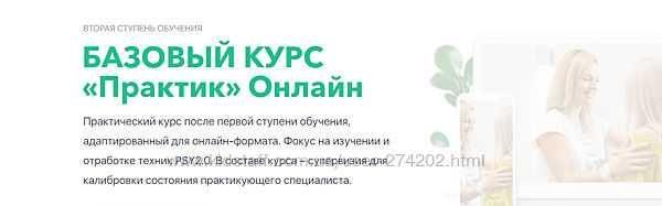 Михаил Филяев 12 курсов Школа психосоматики PSY 2.0 Базовый Практик