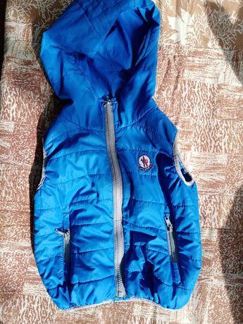 Осенне- весенняя куртка, термокомбинезон, желетка, ветровка