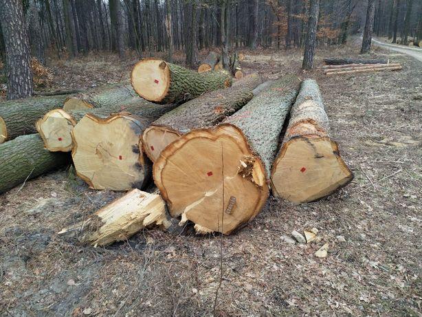Drewno stosowe liściaste kominkowe wałki buk grab dąb brzoza