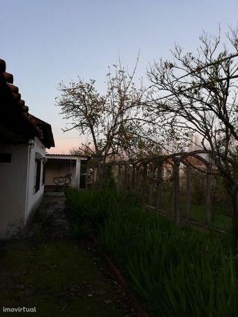 Quinta com área rústica e urbana para turismo rural