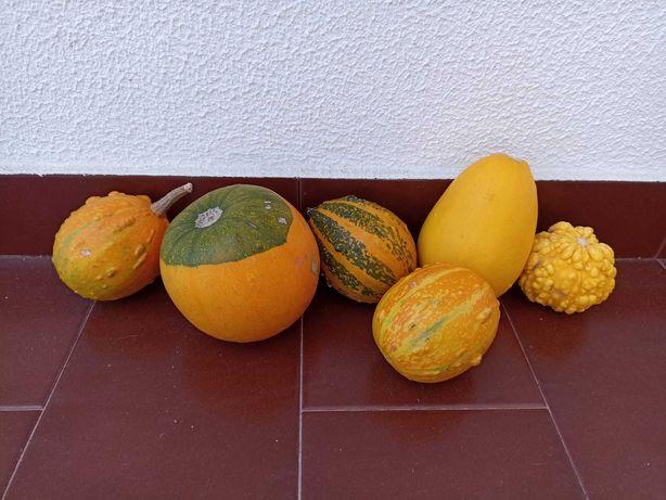 Abóboras decorativas Halloween