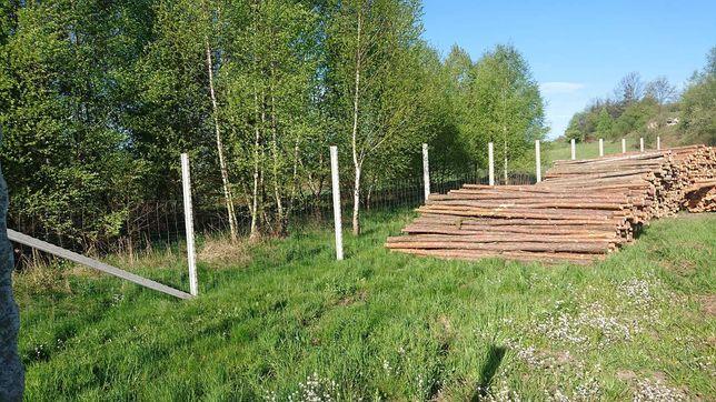 Sprzedam stemple, stęple budowlane , drewniane 3,5 m