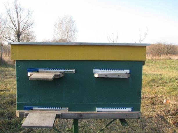 Улья для пчёл, улики, улья