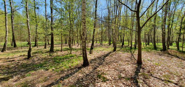 Działka leśno-budowlana, 1500 m kw. Henryków Urocze