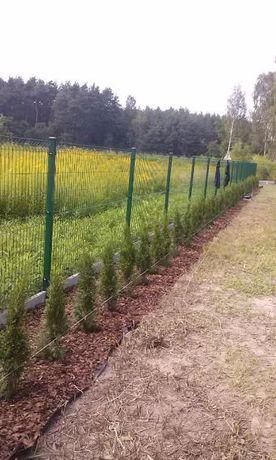 Ogrodzenia ogrodzenie płoty płotki siatki panelowe bramy furtki inne