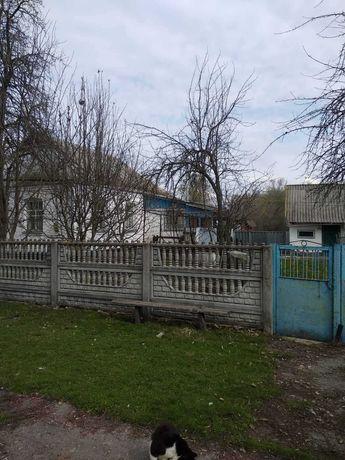 Продається будинок Село Калинове (Чапаєвка), вулиця Новоселівська 167