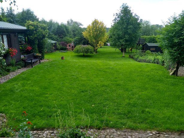 Usługi ogrodnicze, nawadnianie trawnik, brukartstwo, ogrodnik