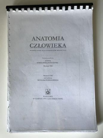 Anatomia człowieka Pituchowa skrypt