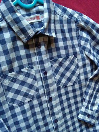 Koszula kratka 122 cool club bialo-niebieska