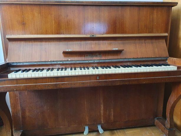 Pianino Legnica rok 1956