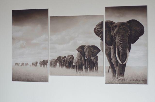 Картина слоны, печать на холсте, модульные картины, фотокартина
