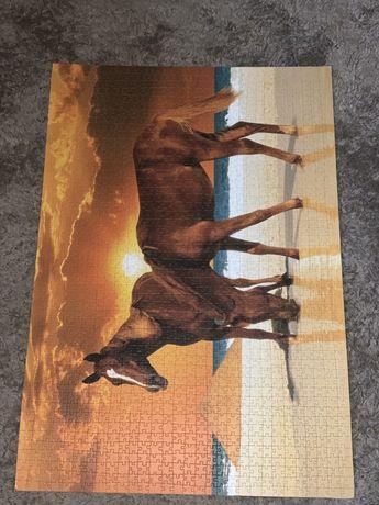 Obraz konie puzzle