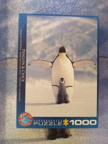 Puzzle Eurographics 1000 Pingwin i pisklę (Penguin & Chick)