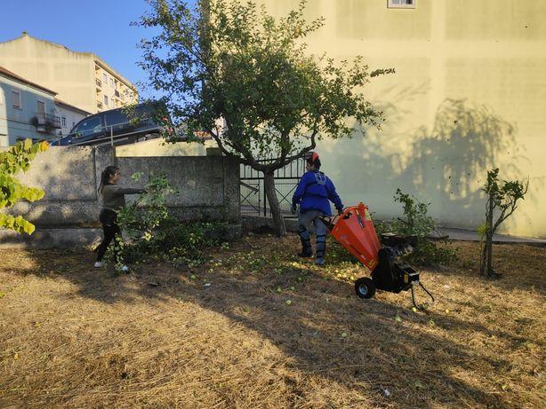 Serviço biotriturador ramagens árvores