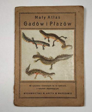 """Stary """"Mały atlas GADÓW I PŁAZÓW"""" 1925 rok - barwne tablice książka"""