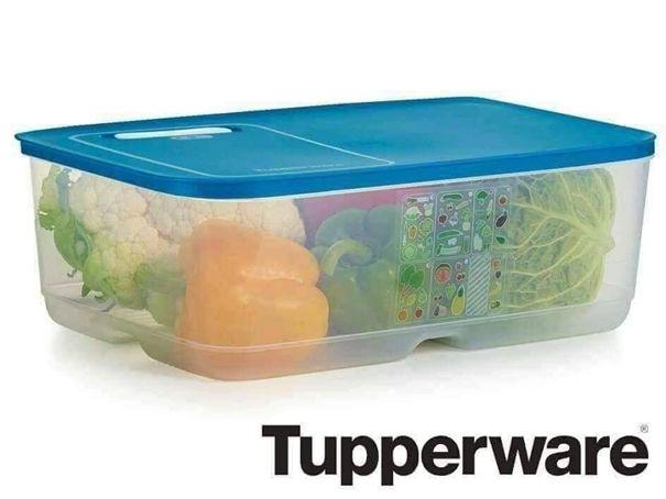 Ventsmart 10 l Tupperware ( 2sztuki)