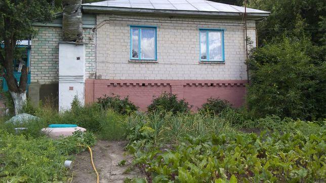 Продаётся дом с постройками Коропской район Черниговская обл.с.Радичев