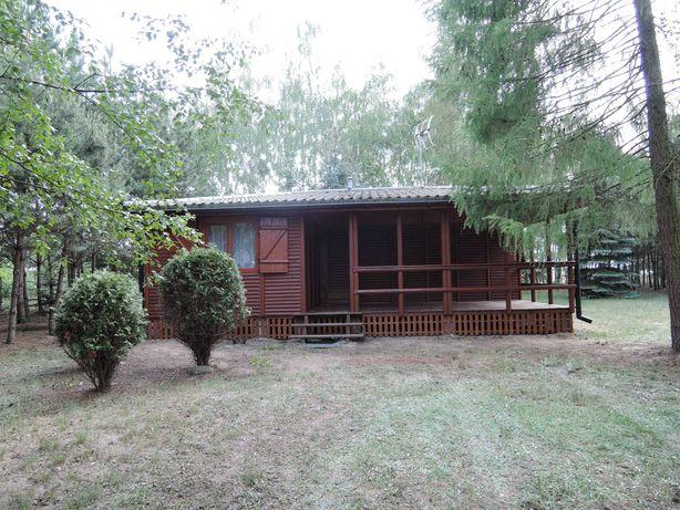 Domek dom letniskowy nad jeziorem wynajmę działkę -dla max. 8 osób