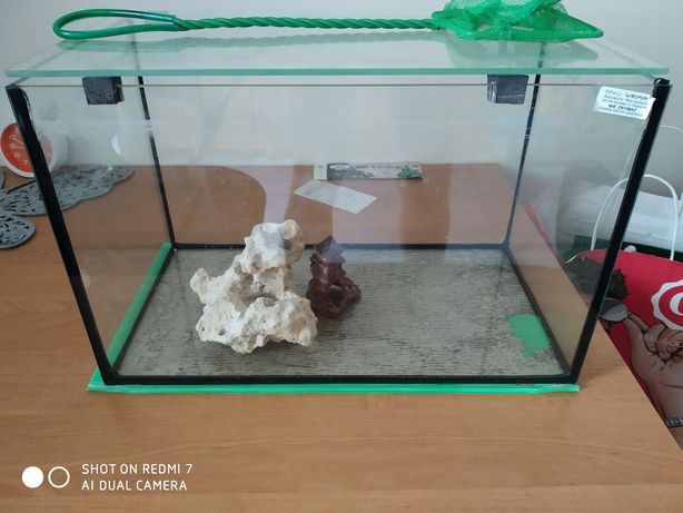 Akwarium z pokrywą i dodatkami