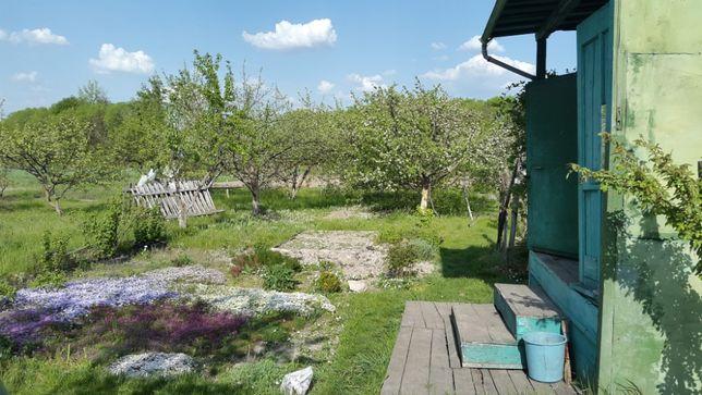Продажа участка садовый домик Фастов рядом