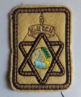 emblema escuteiros escoteiros novo