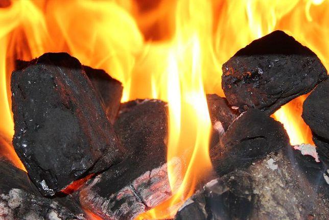 Węgiel kamienny extra