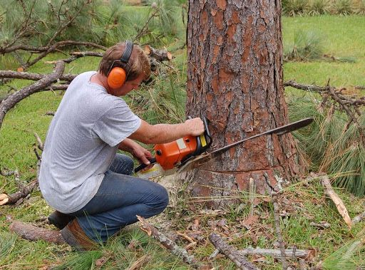 Спил корчевание Деревьев,Выравнивание Уборка Участка,Демонтаж Вывоз Му