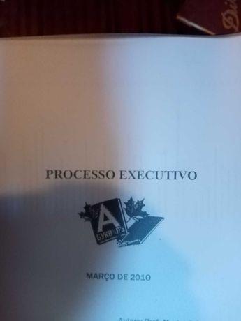 Livro de Processo Executivo - autora : Cláudia Boloto