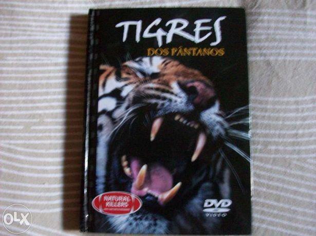 Tigres dos Pantanos