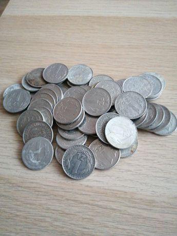 Moneta 1zł 53szt
