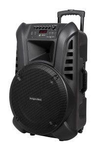 Aktywna kolumna głośnikowa 2 mikrofony bezprzewodowe UHF, SD, BT FM