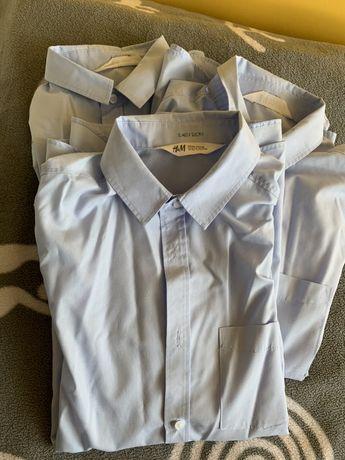 Zestaw trzech niebieskich koszul H&M rozm. 164