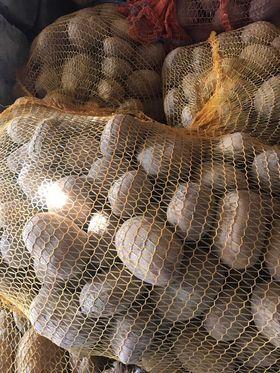 Ziemniaki kalibrowane