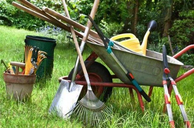 Услуги садовника, Защита и лечение растений от вредителей ,благоустрой