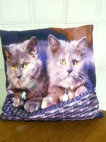 Almofada 2 gatinhos cesto