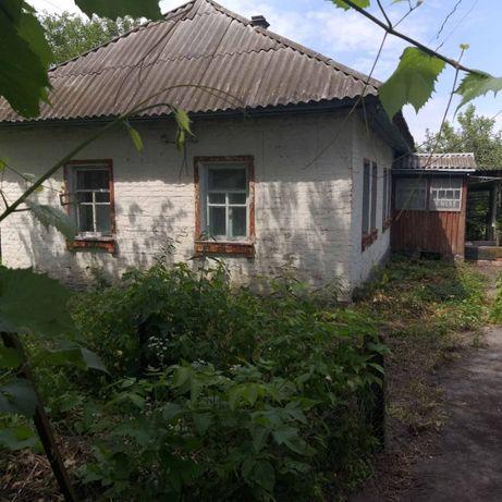 Продам дом с. Красиловка, 34 км от Чернигова (3113002П)