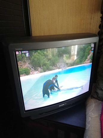 Televisor Sony Trinitron de 60 cm em perfeito estado de funcionamento
